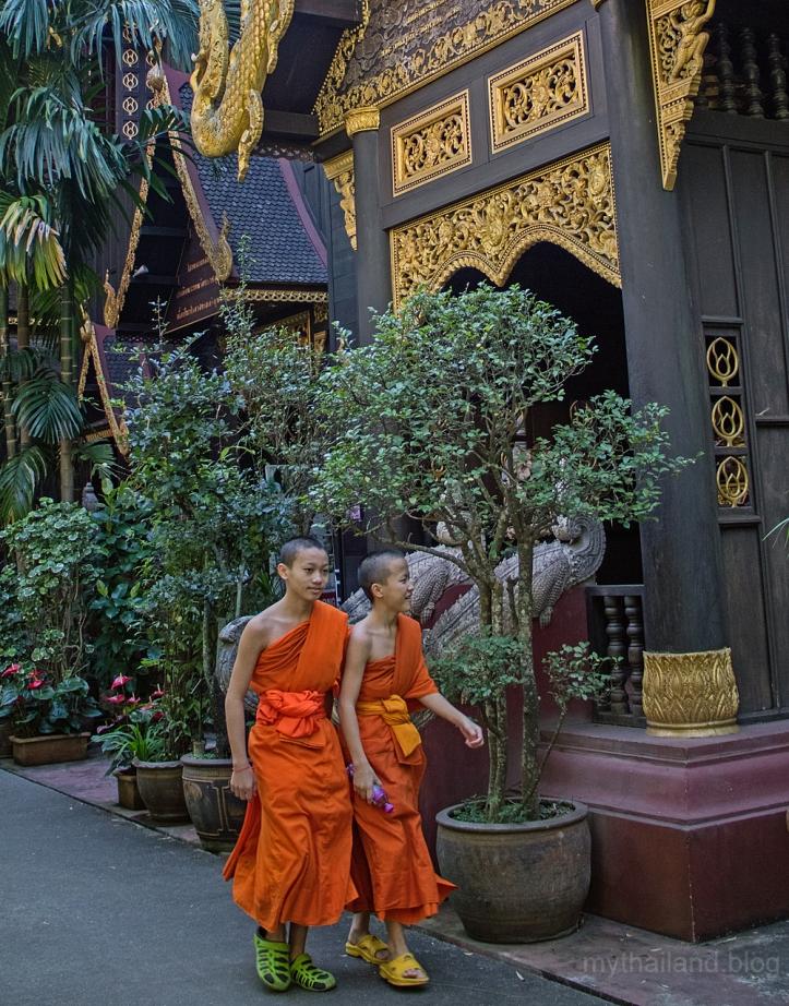 Chiang-Rai Life