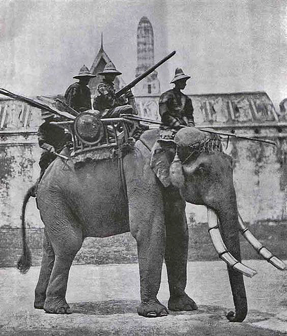 Vintage photo of a war elephant in Bangkok Thailand circa 1890.