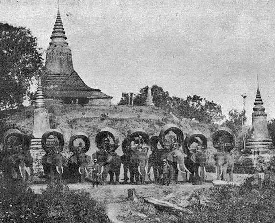 1890 Ayutthaya, Thailand. Elephant caravan at the ruins of the old city.